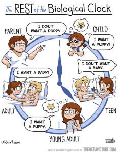 funny-clock-life-puppy-baby